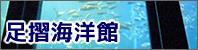 Ashizuri Aquarium