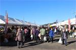Tosashimizu City Industrial Festival