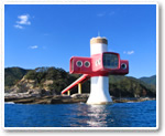 Ashizuri Underwater Observation Tower