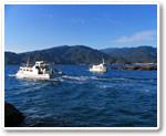 龙串海中公园玻璃底船